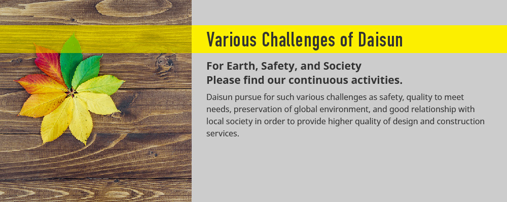 Various Challenges of Daisun
